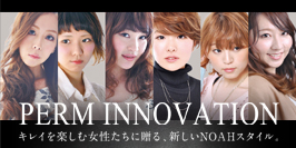 perminnovation_2